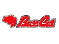 BassCat